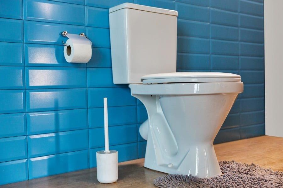Best Flushing Toilets On The Market